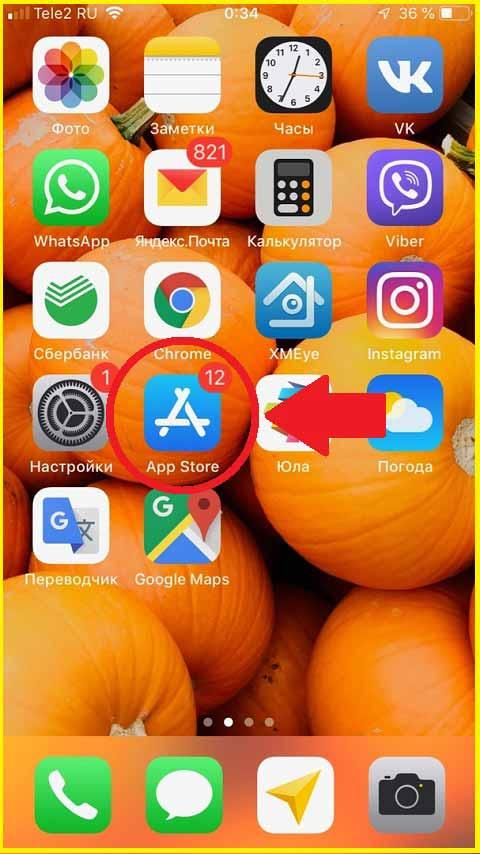 Приложение App-Store для установки Инстаграм на Айфон