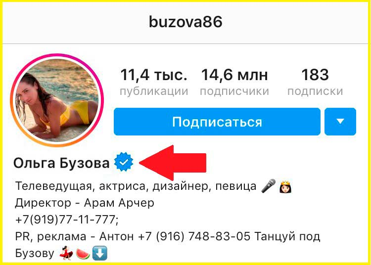 Синяя Галочка Instagram