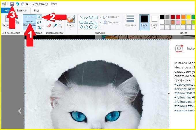 Обрезка фотографии из скриншота Инстаграм на компьютере